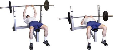 barbell close grip bench press bodybuilding arm workouts