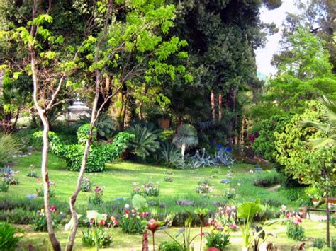 giardino botanico gardone riviera il giardino botanico andr 233 heller itinerari brescia