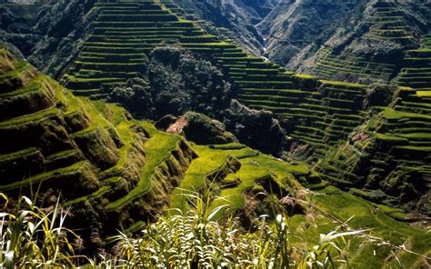 philippines wallpapers human landscape wallpapers pictures free download