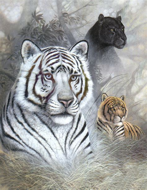 White Tiger L by White Tiger Black Panther Poster Tiger 17x22 In