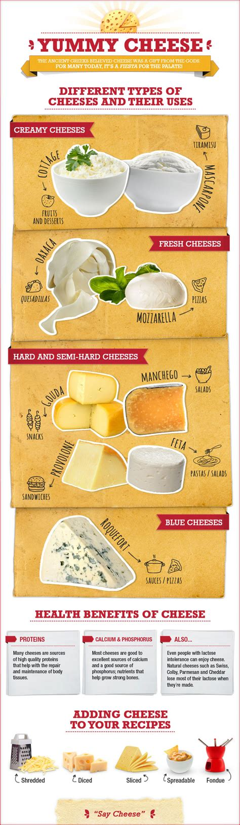 cottage cheese uses a cheese course the basic types and uses of cheese