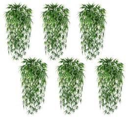 Bamboo Bush IN Outdoor plant Grass Decor Patio Aquarium Floral   eBay