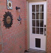 Pet Ready Exterior Doors 71 Best Images About Remodel Ideas On Pinterest Front Doors Nebraska Furniture Mart And