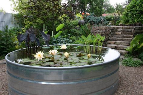 Planter Pond by Galvanized Water Trough Planters Nifty Homestead
