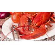 COMIDAS TIPICAS DE LA REGION INSULAR  Gastronomia