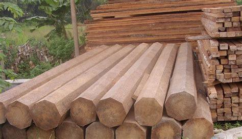 Balok Jati Harga Terjangkau Ukuran Custome daftar harga kayu jati per batang berbagai jenis harga bahan bangunan terbaru