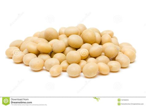 Kedelai Green Soya Gold soya beans royalty free stock images image 10794919