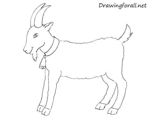 how to draw new year goat 23 best images about goat on free to use