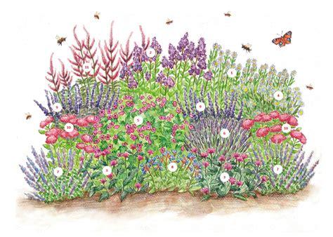 pflanzplan staudenbeet mit gräsern mouvement 233 cologique 187 empfohlene pflanzen