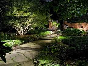 backyard landscape lighting how to illuminate your yard with landscape lighting hgtv