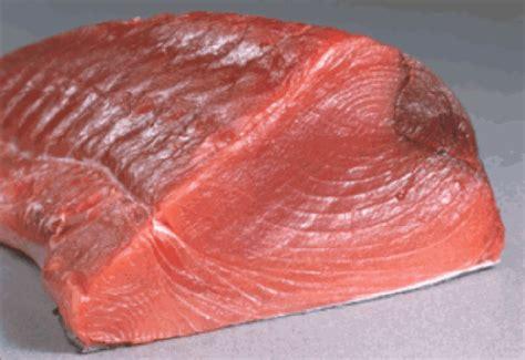 Ikan Tuna Loin Fillet my world fisheries gallery bppmhp makassar part i