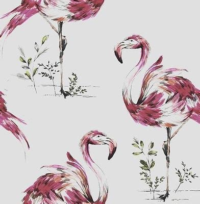 flamingo feature wallpaper 1000 images about feature wallpaper on pinterest brown