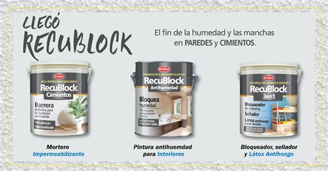 productos para la humedad en paredes interiores para la humedad de las paredes elegir la mejor solucin