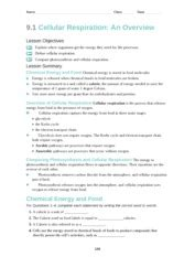 section 8 2 photosynthesis an overview answers bio 9 1 notes daniel demeo 9 1 outline cellular