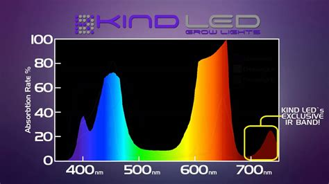 zimtown led grow light review cali light works vs kind led led grow light reviews