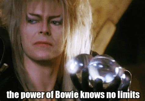 David Bowie Meme - trending tumblr