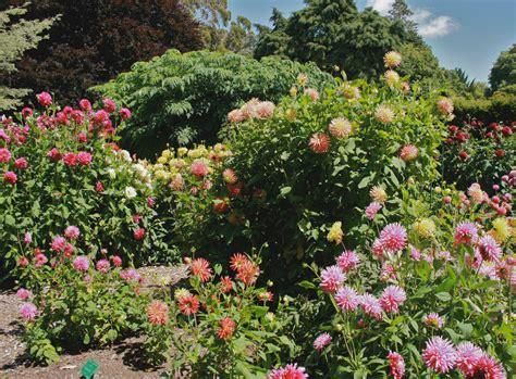 Garden Christchurch Nz Christchurch Botanic Garden New Zealand Walking Tours