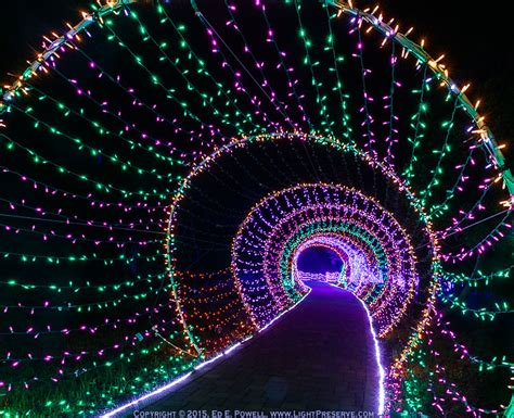 cambria festival of lights recent events