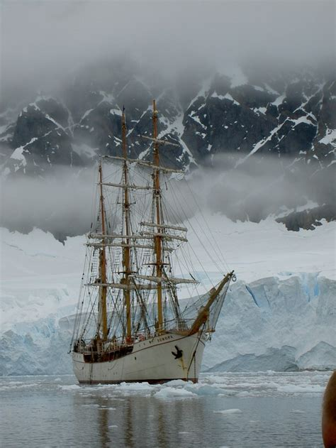 cold waters my ship adventures in the arctic antarctica and atlantic books bark europa freestyle adventure travel