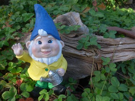 lawn gnome the best black friday bargains for your lawn garden