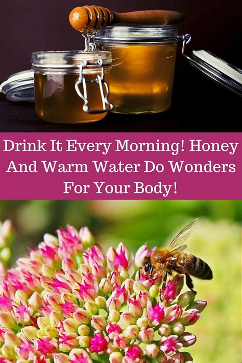 Salt Read More Https Betterme Tips 6722 Did Detox Html 6722 by 37 Best Images About Honey For Health On