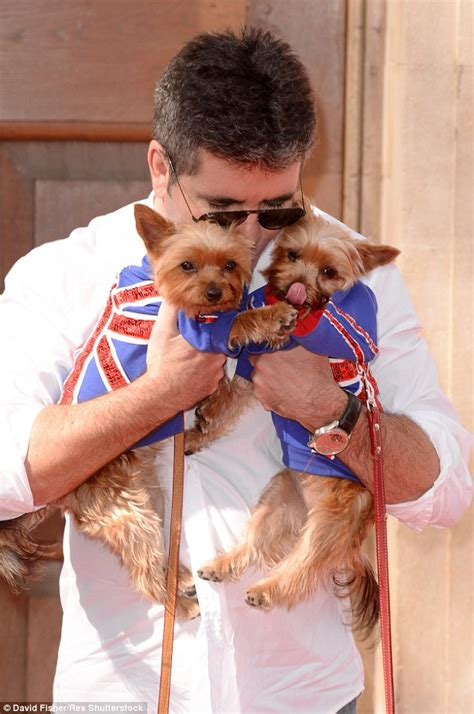 simon cowell dogs simon cowell wants to clone his pet pooches squiddly and diddly daily mail