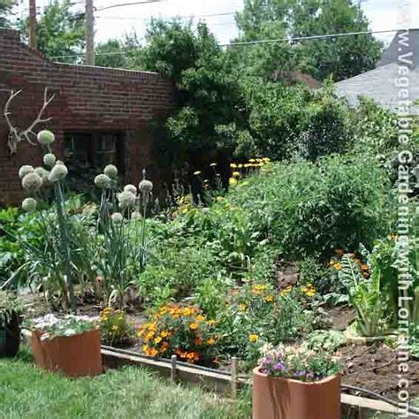 Organic Weed Control Best Killer For Vegetable Gardens