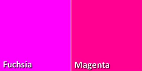 color fushia what is the difference between magenta and fuchsia