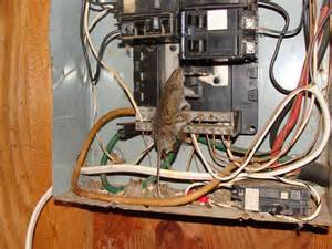 how to inspect your own house part 5 electrical