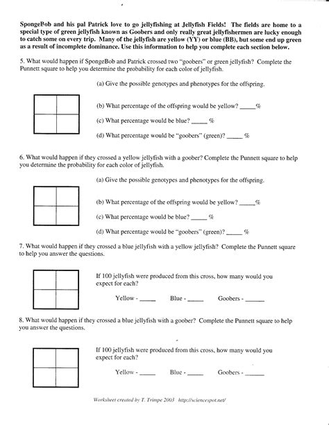 Punnett Square Problems Worksheet by Uncategorized Punnett Square Practice Problems Worksheet