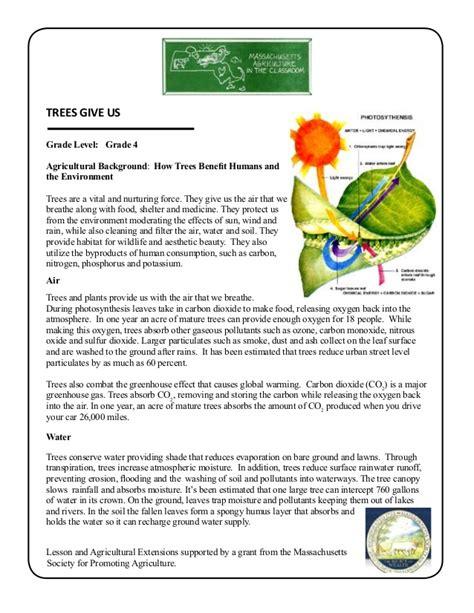 Garden Lesson Plans Grade 4 School Garden Lesson Plan Leaf Lesson Trees