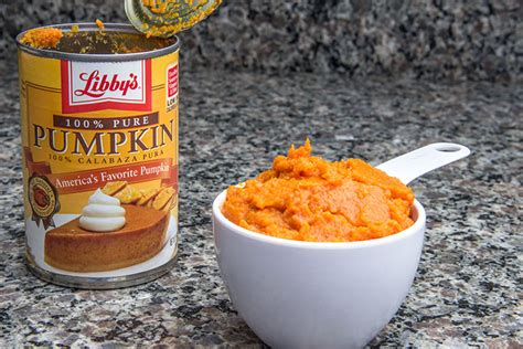 canned pumpkin for dogs top 6 home remedies for dogs