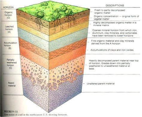 soil horizons diagram soil profile diagram for school soil layers diagram