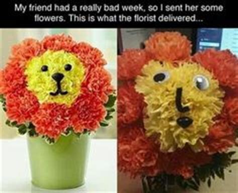 floral arrangments or when words fail say it with flowers decor ideas pinterest flower 1000 images about puppy animal flowers on pinterest