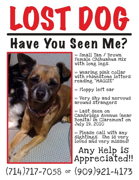 templates for lost pet flyers claremont insider lost dog