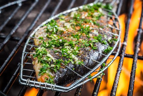 Snack Anjing Fish Salmon Tuna Stick Bok Bok Pet Munchies Treat fish braai recipes food tour recipes