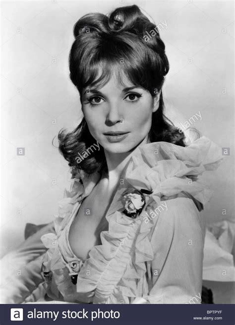 elsa martinelli old elsa martinelli actress 1963 stock photo 31277667 alamy