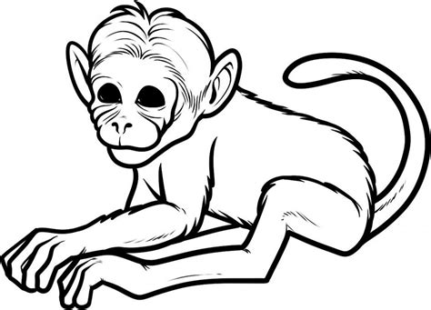 sad monkey coloring page pics of cartoon monkeys cliparts co