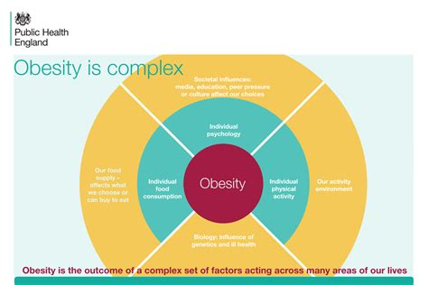 weight management statistics obesity applying all our health gov uk