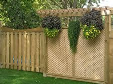 how to make backyard more private making your backyard more private