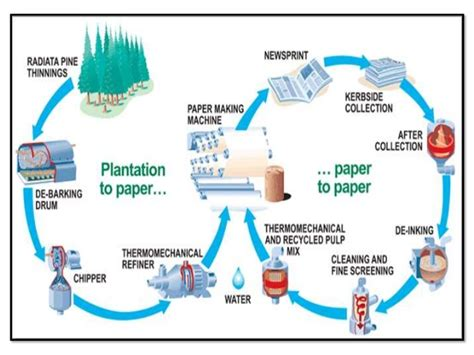 Process Of Toilet Paper - invention of paper