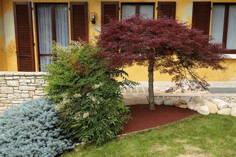 giardini colorati giardini a bassa manutenzione tipi di giardini come