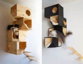 Cool Cat Furniture by 20 Awesome Furniture Design Ideas For Crazy Cat People