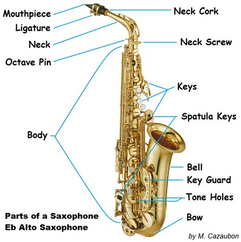 Part Of The parts of the saxophone
