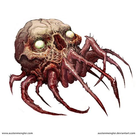 spider skull by austenmengler on deviantart