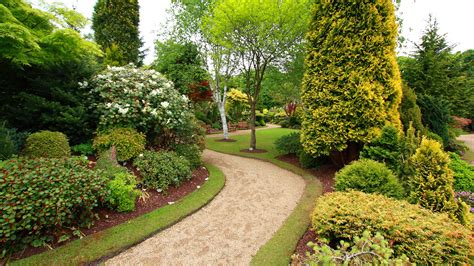 Landscaping Pictures Littleton Landscaping Landscape Design Installation And