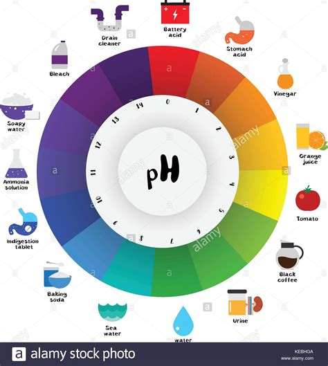 ph color chart the ph scale universal indicator ph color chart diagram