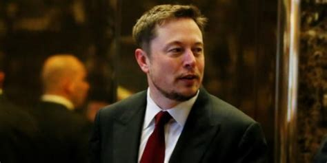elon musk cries scientists find footprint of unknown ancient reptile in