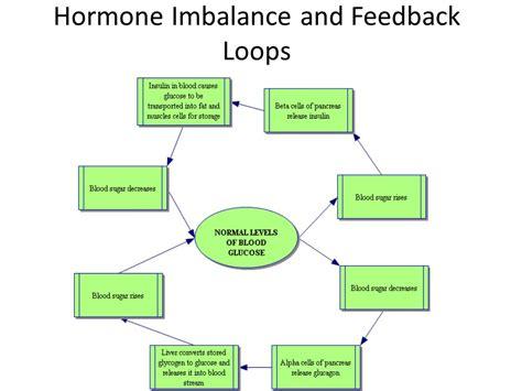 feedback diagram normal level of blood glucose feedback loop ma