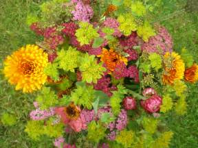 Images Of Flowers In The Garden File Flower Garden July 2012 061 Jpg Wikimedia Commons